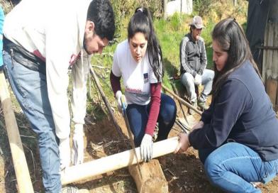 Voluntarios de AIEP realizaron su aporte en Chue